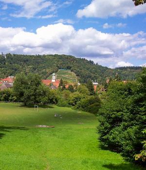 Ferienwohnung im Südschwarzwald