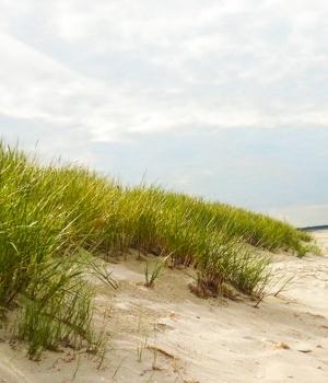 Ferienhaus an der Ostseeküste